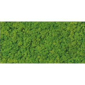 Fresh Moss Glass Inserto 29X59